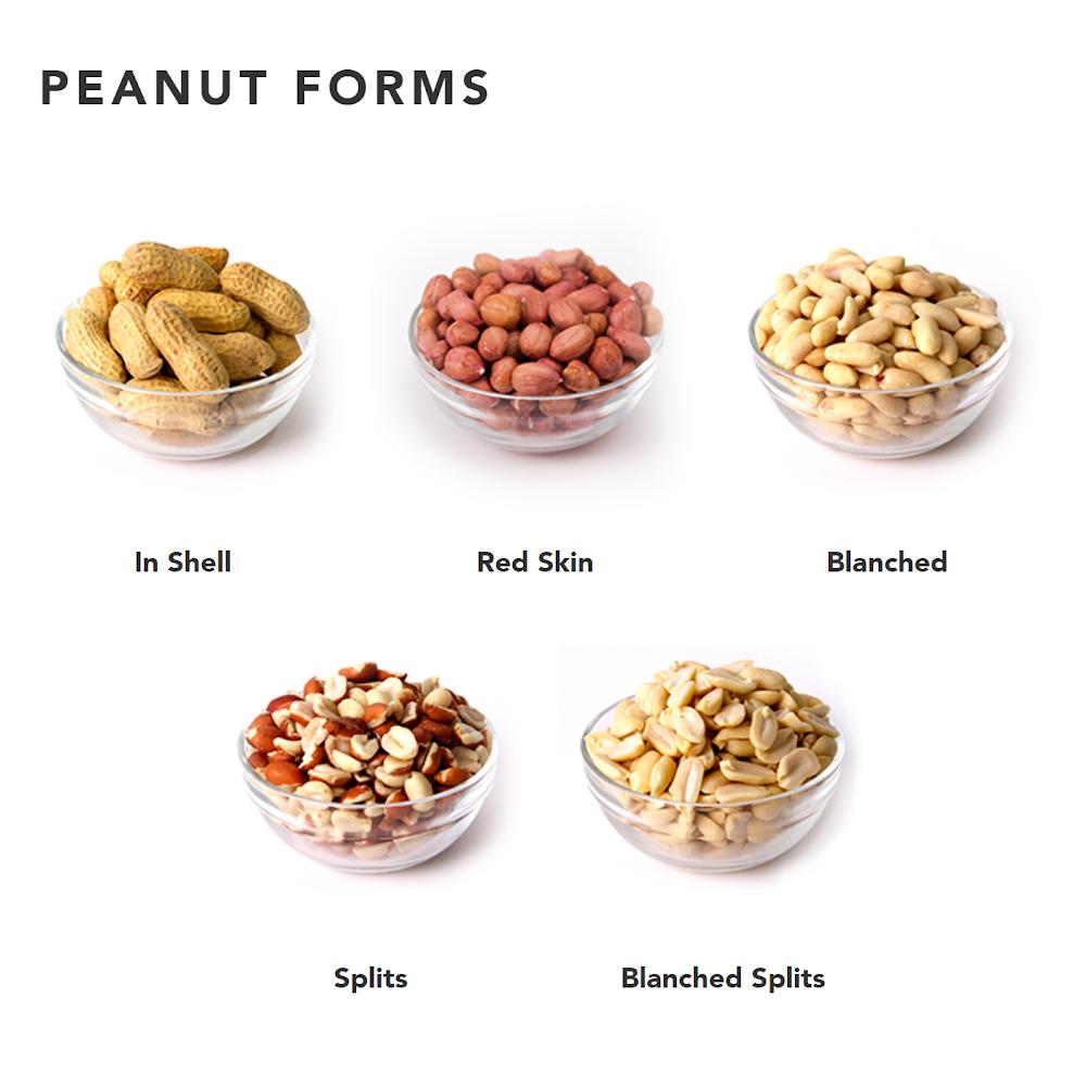PeanutForms-New